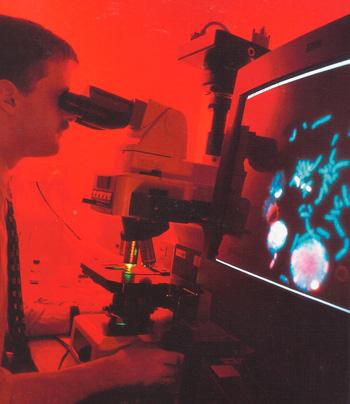 обследования хромосом