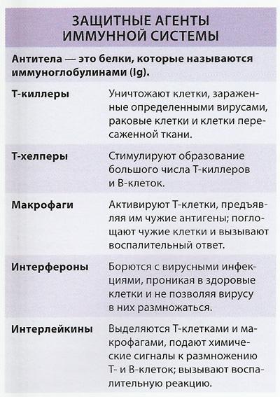 таблица имунной системы