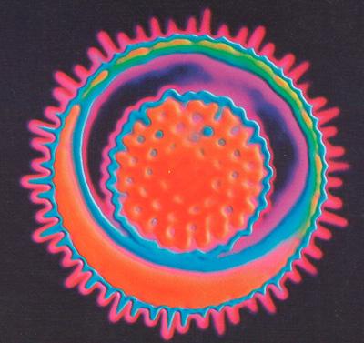 Вирус фото