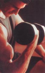 мышцы плеча фото