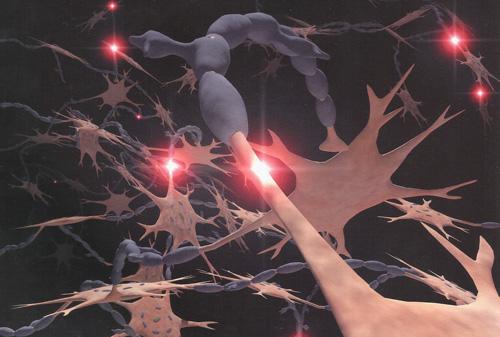 нервы рисунок